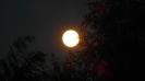 Mond_6